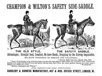 Safety Saddle--Giclee Print
