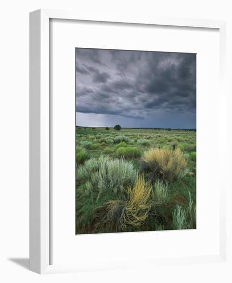 Sage and Storm Clouds Near Gallup-Phil Schermeister-Framed Photographic Print
