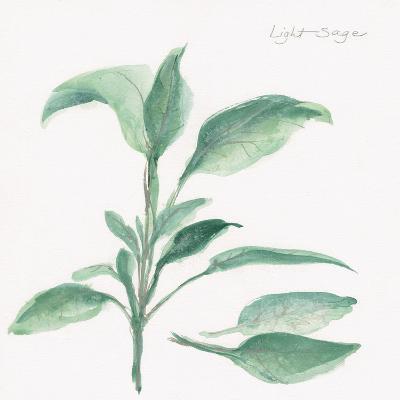 Sage II-Chris Paschke-Art Print