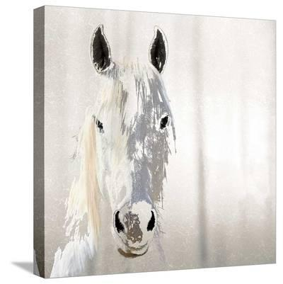 Sage-Marvin Pelkey-Stretched Canvas Print