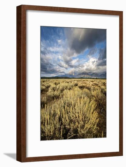 Sagebrush And Sky In Grand Teton National Park-Bryan Jolley-Framed Photographic Print