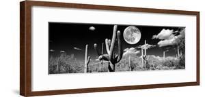 Saguaro cactus in moonlight at Saguaro National Park, Tucson, Arizona, USA