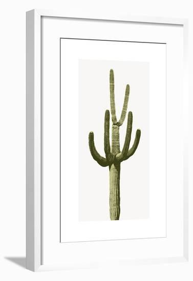 Saguaro III-Mia Jensen-Framed Giclee Print