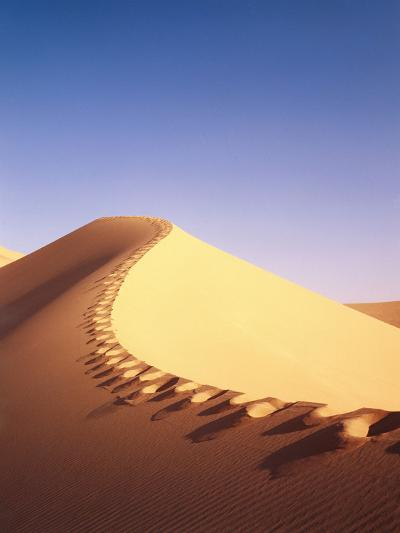 Sahara, Sand Dune, Footprints-Thonig-Photographic Print
