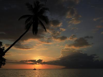 Sailboat and Moorea Island Viewed from Papeete-Stephen Alvarez-Photographic Print