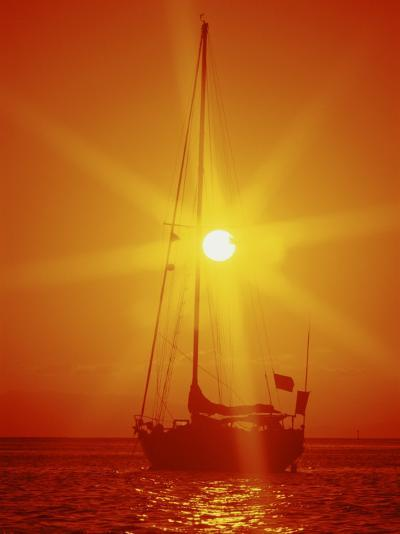 Sailboat at Sunset--Photographic Print