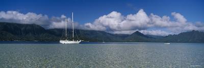 Sailboat in a Bay, Kaneohe Bay, Oahu, Hawaii, USA--Photographic Print