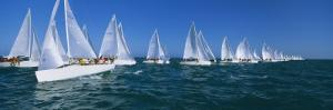 Sailboat Racing in the Ocean, Key West, Florida, USA