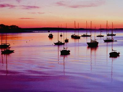 Sailboats Anchored in a Harbor-Cindy Kassab-Photographic Print