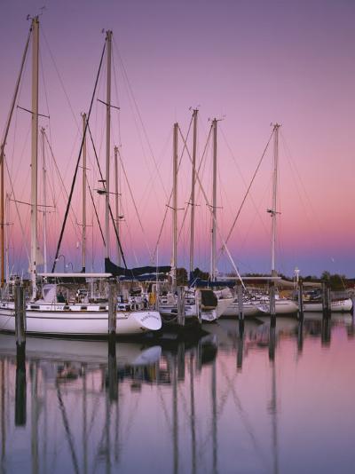 Sailboats at Dusk, Chesapeake Bay, Virginia, USA-Charles Gurche-Photographic Print