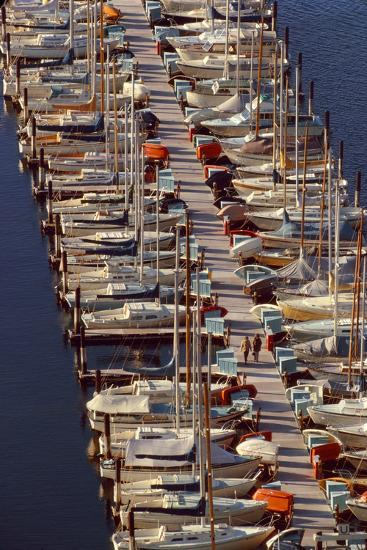 Sailboats at Moorage-Harald Sund-Photographic Print