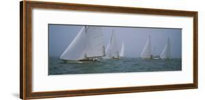 Sailboats at Regatta, Newport, Rhode Island, USA