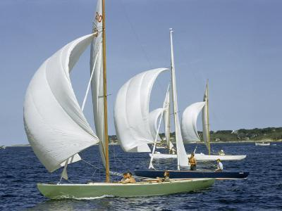 Sailboats Cross a Race Course Starting Line with Wind-Filled Sails-Robert Sisson-Photographic Print