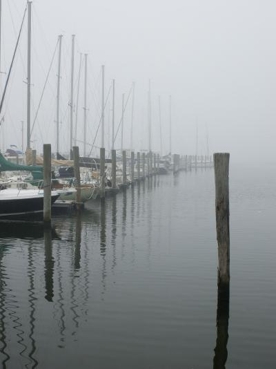 Sailboats Docked at a Pier on a Foggy Day-Todd Gipstein-Photographic Print