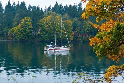 Sailboats in a Lake, Washington State, USA--Photographic Print