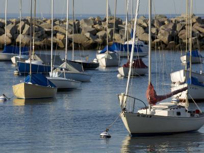 Sailboats in Rockport Harbor, Ma-Tim Laman-Photographic Print