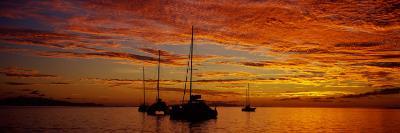 Sailboats in the Sea, Tahiti, French Polynesia--Photographic Print