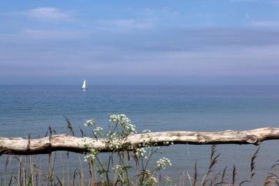 https://imgc.artprintimages.com/img/print/sailboats-on-the-calm-baltic-sea_u-l-q11vy6w0.jpg?p=0
