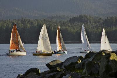 Sailboats Race in Competition Near Ketchikan, Alaska During Summer-Design Pics Inc-Photographic Print