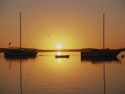 Sailboats Silhouetted at Sunset on Morro Bay-Rich Reid-Photographic Print