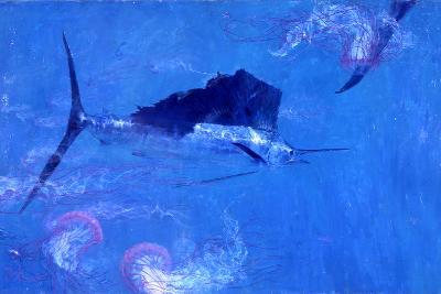 Sailfish and Jellyfish-Stanley Meltzoff-Photographic Print