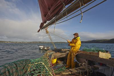 Sailing an Oyster Dredger, in Carrick Roads, the Estuary of the River Fal, Near Falmouth, Cornwall-Nigel Hicks-Photographic Print