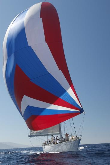 Sailing Boat in Yacht Race--Photo