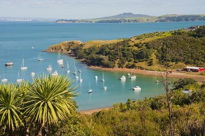 Sailing Boats on Waiheke Island, Auckland, North Island, New Zealand, Pacific-Matthew Williams-Ellis-Photographic Print