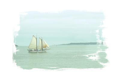 Sailing on the Bay