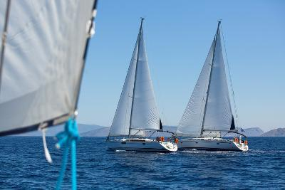 Sailing Ship Yachts with White Sails in a Row.-De Visu-Photographic Print