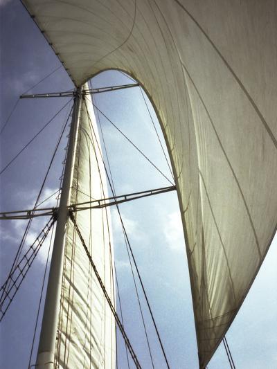 Sails Cathedral-Magda Indigo-Photographic Print