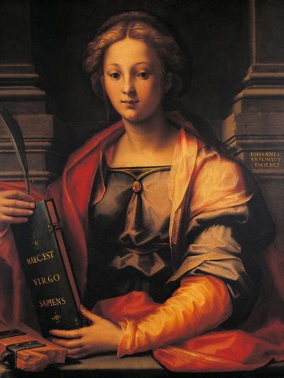 Saint Catherine of Alexandria-Giovanni Antonio Sogliani-Giclee Print