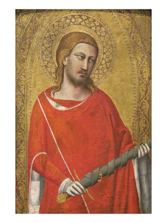 https://imgc.artprintimages.com/img/print/saint-julian_u-l-pgkmaw0.jpg?p=0