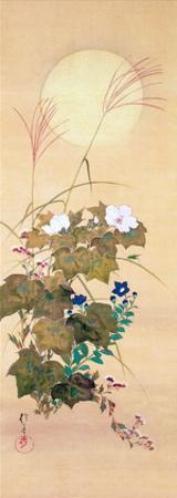 August by Sakai Hoitsu