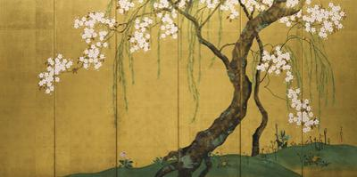 Maples and Cherry Trees by Sakai Hoitsu