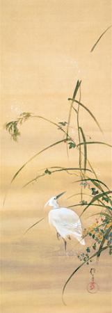 November by Sakai Hoitsu