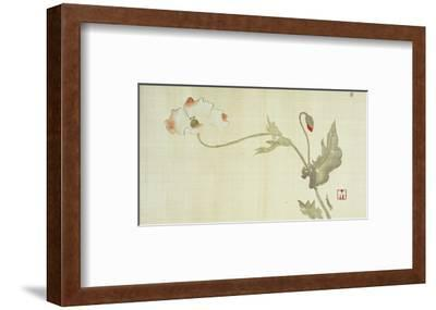 Poppy from Primrose, Mount Fuji, Bamboo and Toy Bird, Kanzan and Jittoku, Cuckoo under the Moon,…
