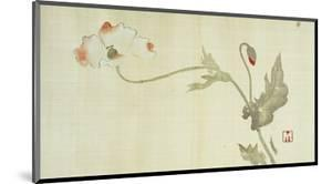 Poppy from Primrose, Mount Fuji, Bamboo and Toy Bird, Kanzan and Jittoku, Cuckoo under the Moon,… by Sakai Hoitsu