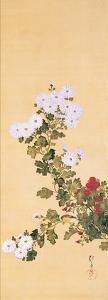 September by Sakai Hoitsu