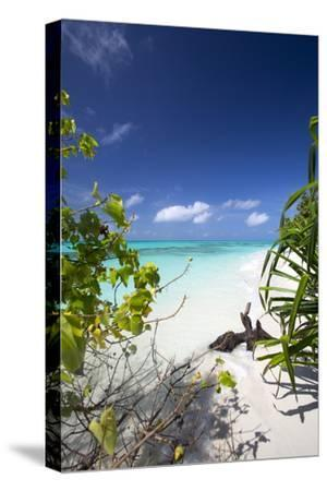 Beach on Desert Island, Maldives, Indian Ocean, Asia