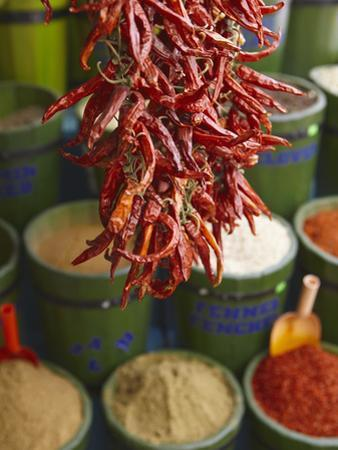 Chillies in Spice Market, Istanbul, Turkey, Europe by Sakis Papadopoulos