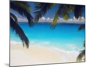 Empty Beach and Palms Trees, Seychelles, Indian Ocean, Africa by Sakis Papadopoulos