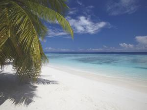 Empty Beach on Tropical Island, Maldives, Indian Ocean, Asia by Sakis Papadopoulos