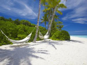 Hammock on Empty Tropical Beach, Maldives, Indian Ocean, Asia by Sakis Papadopoulos