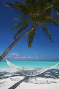 Hammock on Tropical Beach, Maldives, Indian Ocean, Asia by Sakis Papadopoulos