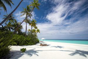 Lounge chairs under shade of umbrella on tropical beach, Maldives, Indian Ocean, Asia by Sakis Papadopoulos