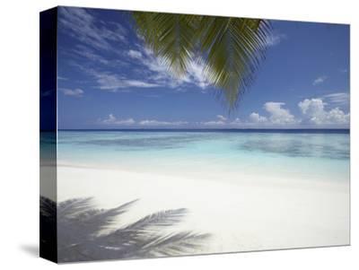 Maldives Tropical Beach, Maldives, Indian Ocean, Asia