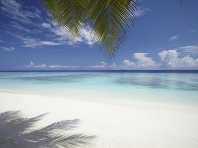 Maldives Tropical Beach, Maldives, Indian Ocean, Asia by Sakis Papadopoulos