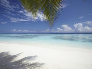 Maldives Tropical Beach, Maldives, Indian Ocean, Asia by Sakis Papadopoulos