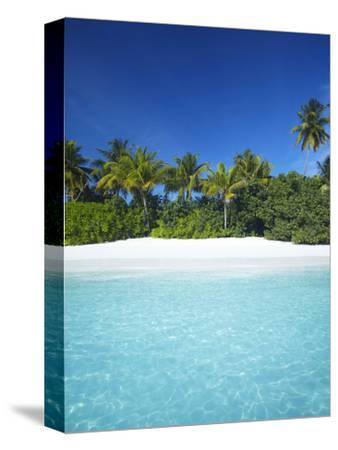 Tropical Beach, Maldives, Indian Ocean, Asia